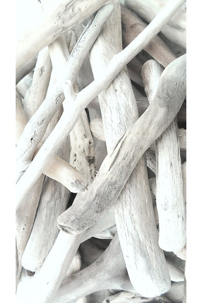 Long driftwood