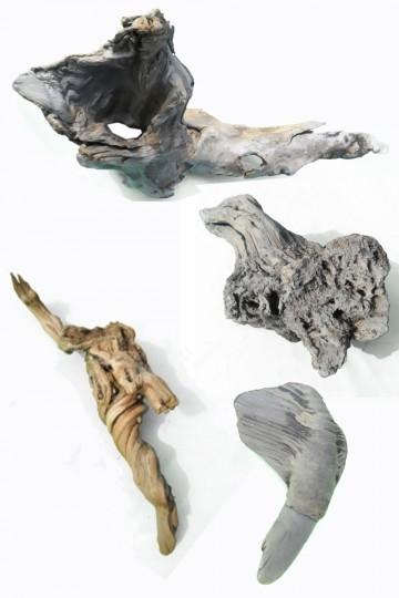 Driftwood raro