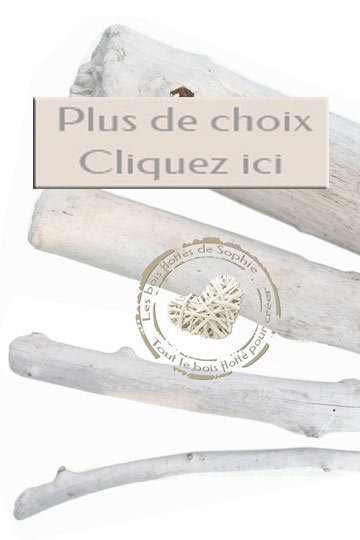 La boutique du bois flott vente de bois flott et for Magasin bois flotte