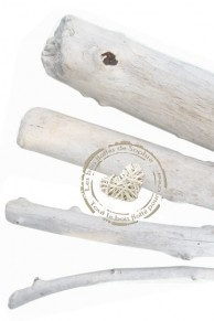 Small branches in driftwood