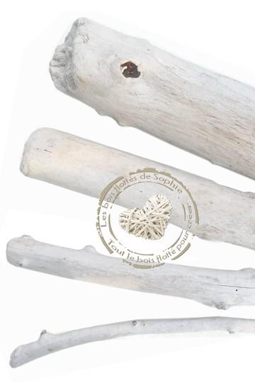 Petites branches en bois flotté