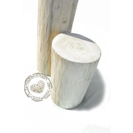 Tronc en bois flotté poli