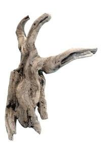 Branche en bois flotté REF PU10