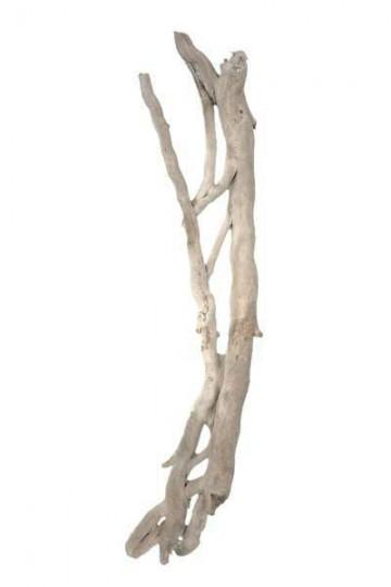 Liane flott e d corative corse pour d coration en bois for Liane bois flotte