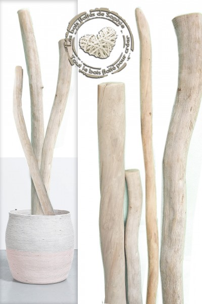 Decorative lienes
