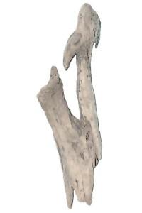 Souche en bois flotté REF PU57