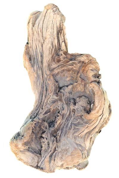 Bois flott unique les bois flott s de sophie for Le bois flotte de sophie