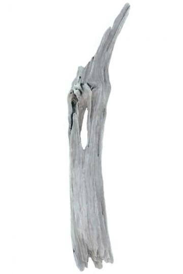 Bois flott unique les bois flott s de sophie for Liane bois flotte