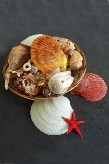 Basket of seashells