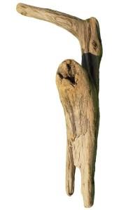 Souche en bois flotté REF PU79