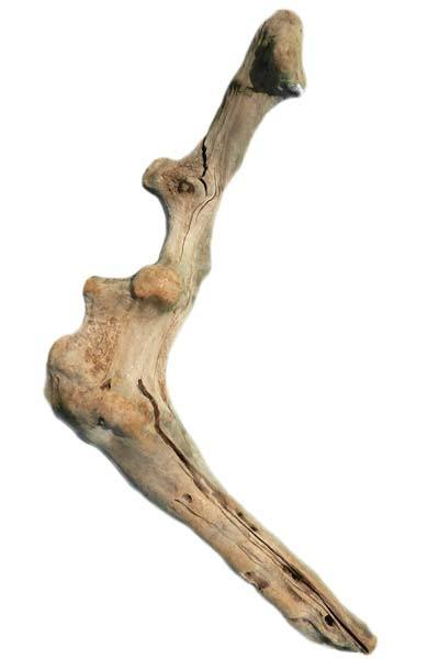 Driftwood PU70