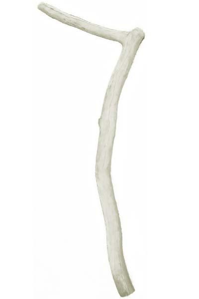 Potence en bois flotté pour lampadaire