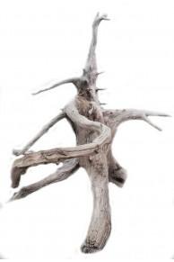 Single driftwood