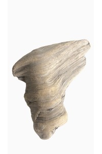 Driftwood Libecciu ref 198