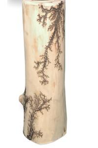 Gorgonocea sculpté sur bois flotté