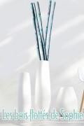 Branches décoratives - Cannes roseaux - Grand modèle