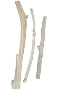 Branches en bois flotté 2 extrémités coupées