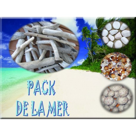 The sea pack driftwood and other natural products les for Traiter le bois flotte