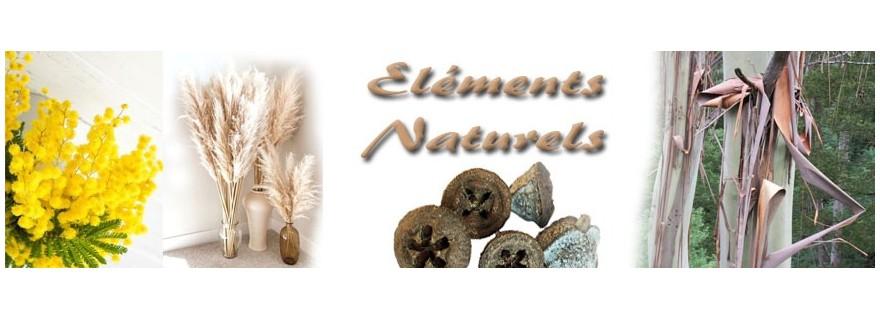 Eléments naturels