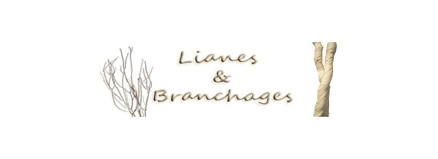 Lianes et branchages